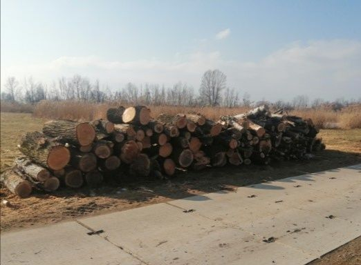 Drewno metrowki opal 30m3