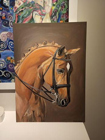 Koń na brazowym tle