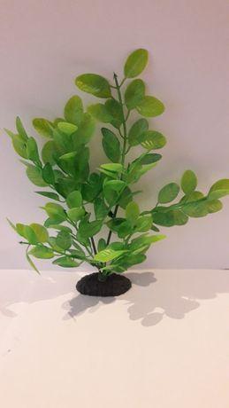 Roślina akwariowa dekoracyjna sztuczna nr.2 Dino 20 cm.