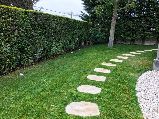 Jardineiros - manutencao e limpeza de jardins e terrenos