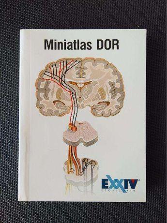 Mini-atlas da Dor