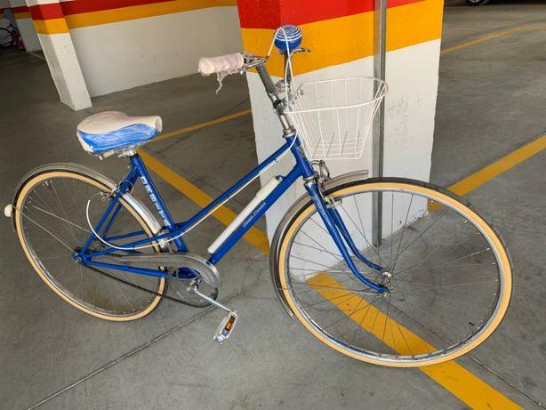 Bicicleta pasteleira Órbita Modelo Popular