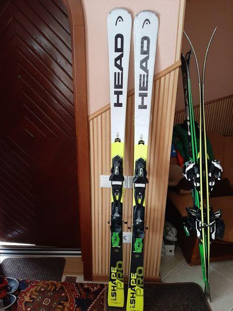 Горные лыжи карвинговые