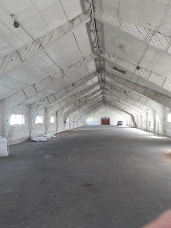 Wynajmę hale wysoka 5m duza brama 1000 m2 trasa 188 Polecam