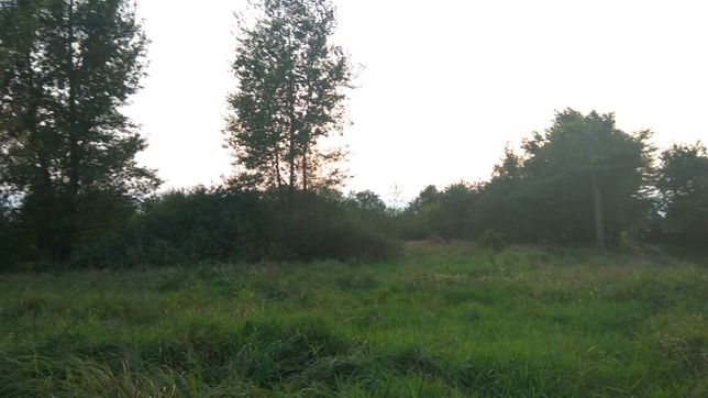Продається старий будинок і земельна ділянка розміром 1ГА