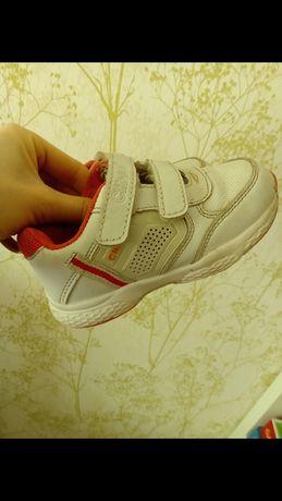 Кроссовки, кросівки Clibee