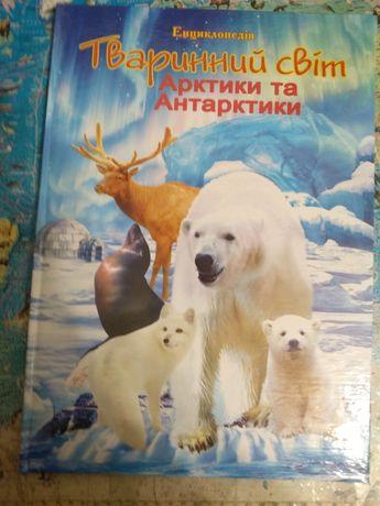 Тваринний світ Арктики та Антарктиди