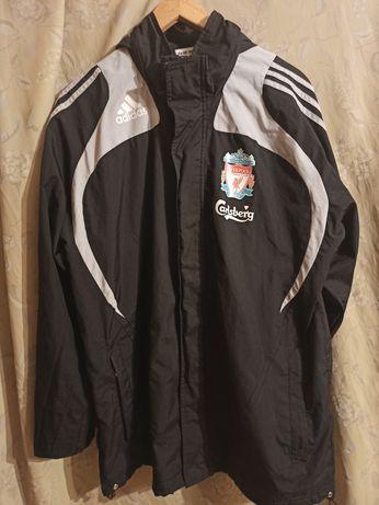 Liverpool Kurtka Adidas L
