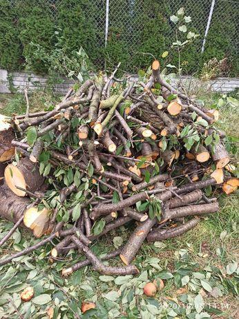 Drewno do wędzenia czereśnia ok 1,5m3