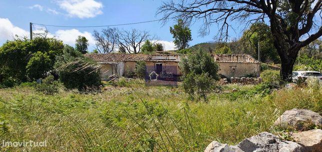 Para venda terreno com ruina em Corte Grande - Monchique