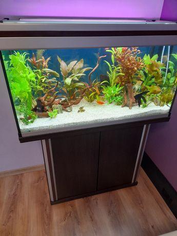 Akwarium aquael 200l