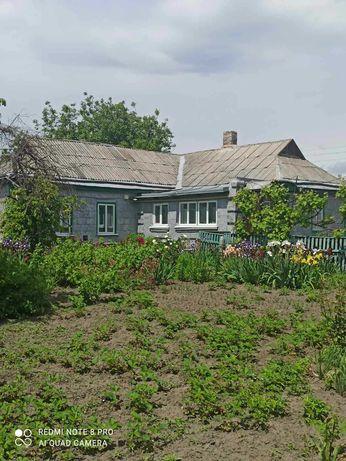 Продається будинок в місті Новомиргород