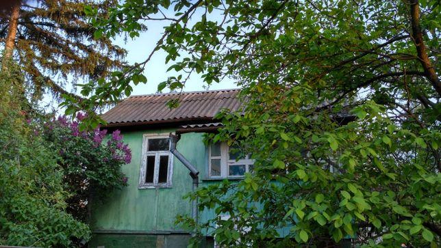 Аренда дачи. Осокорки. Советский летний деревянный эко дом в тени.