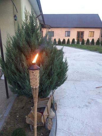 факел смолоскип на керосіні