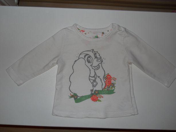 Bluza niemowlęca, piesek, 68