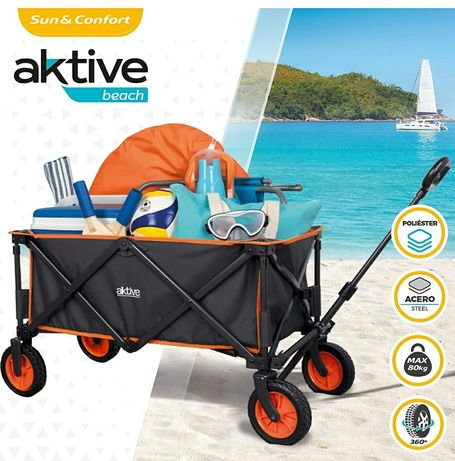 Vendo carro de praia Aktive