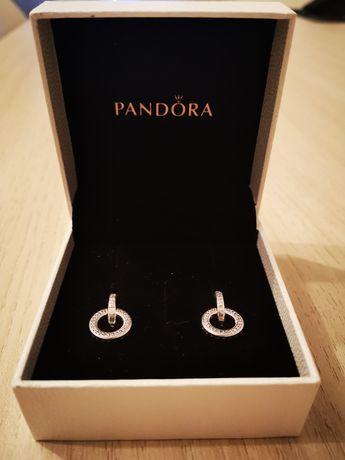 Brincos Pandora Novos