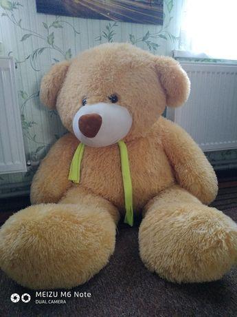 Ведмідь великий