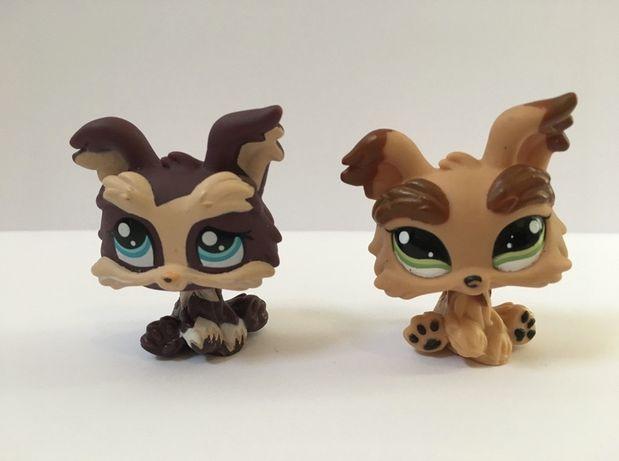 LPS Littlest Pet Shop - figurki pieski