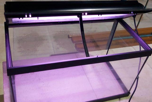 Aquário de 60L com iluminação