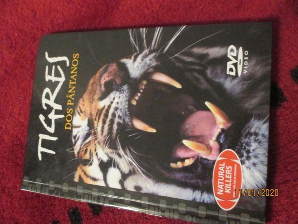 Tigres dos pantanos - dvd e pequeno livro