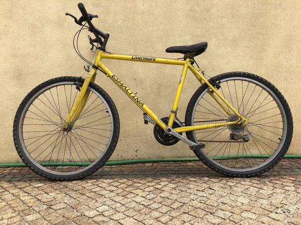 Bicicleta Jovem/Adulto