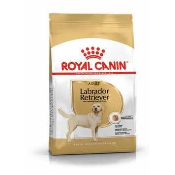 Royal Canin Labrador Retriever Adulto 13kg - PORTES GRÁTIS