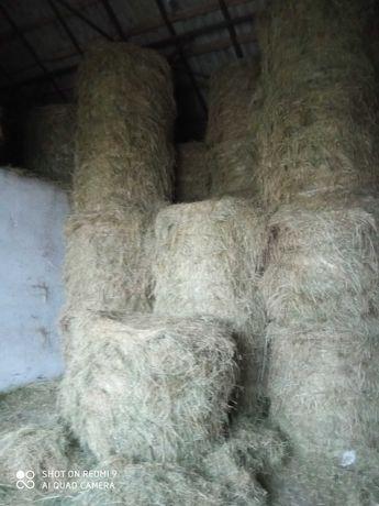 Siano oraz słoma z pod dachu z dostawą