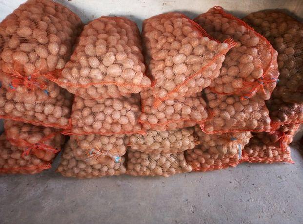 Ziemniaki - kilka odmian!!