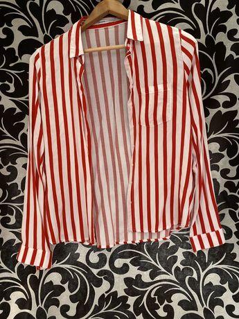 Koszula bialo czerwona