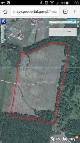 Wydzierżawię grunt rolny, pole uprawne - 12,15 ha