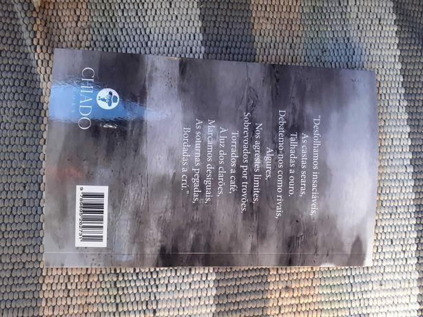 """Livro de poesia """"trilhos"""""""