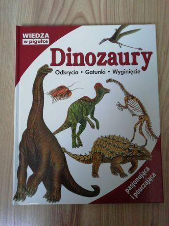 Książka dla dzieci 'Dinozaury'