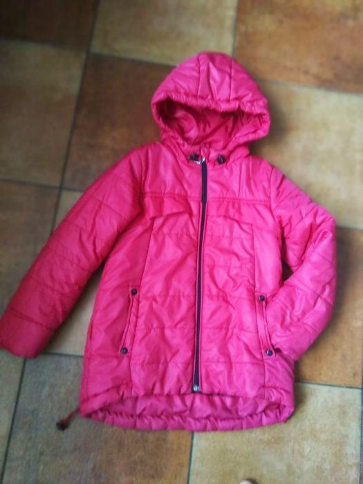 Куртка на дівчинку Крыжополь - изображение 1