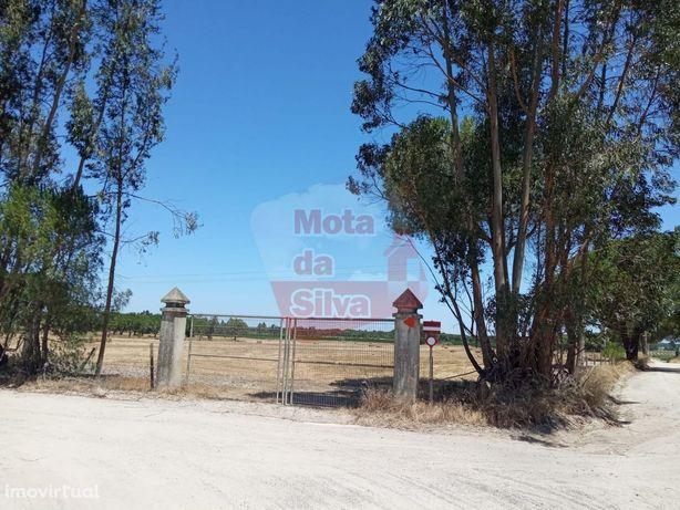 Excelente Terreno para construção e agrícola 10 hectares