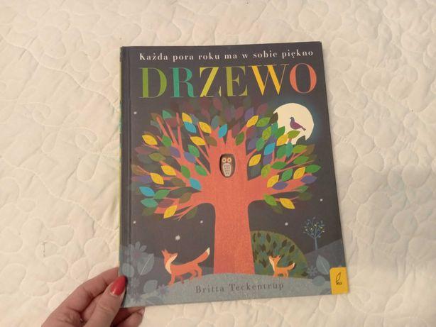 Książka dla dzieci Drzewo