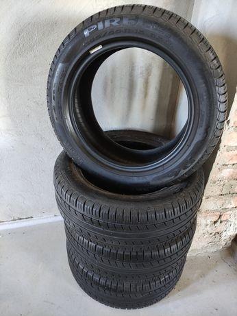 Літні шини Pirelli P6 195/55 R15