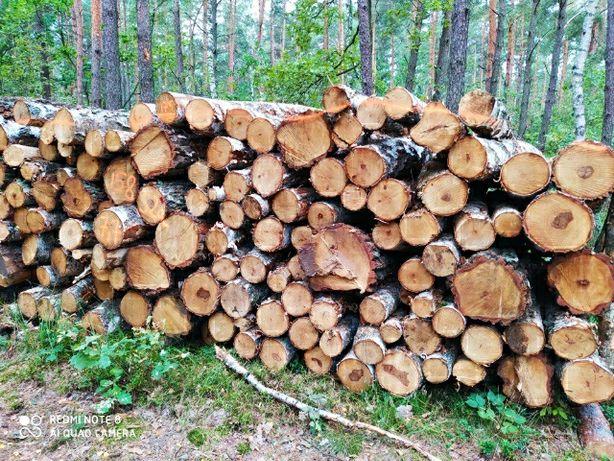 Drewno opałowe kominkowe brzoza Radzymin, Marki, Ząbki, Zielonka