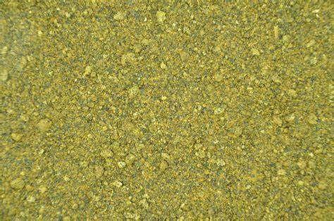 śruta rzepakowa -Tychy - ładna zielona