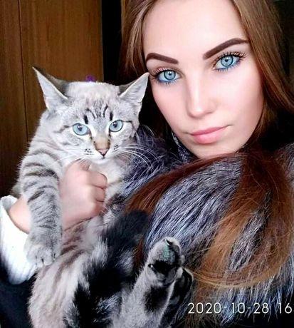 Кошечка в хорошие руки!