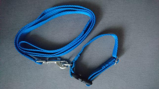 Komplet dla psa obroża i smycz niebieska