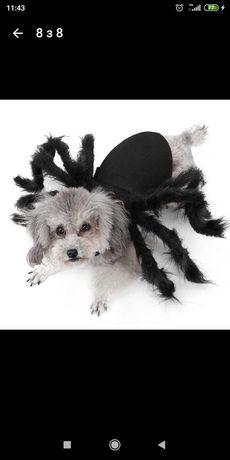 Накладка паука для небольшой собачки или кота на Хеллоуин