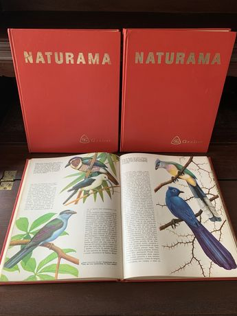 3 livros antigos Natureza NATURAMA (GROLIER)