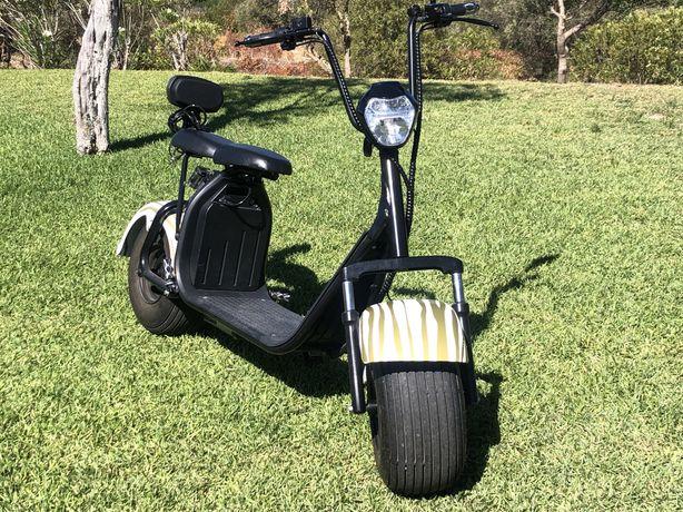 Mota ou scooter eletrica 2 lugares 2000w