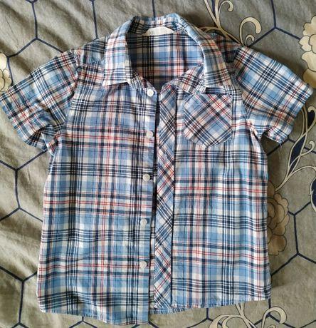 2 koszule dla chłopca rozmiar 110 -komplet 10 zł
