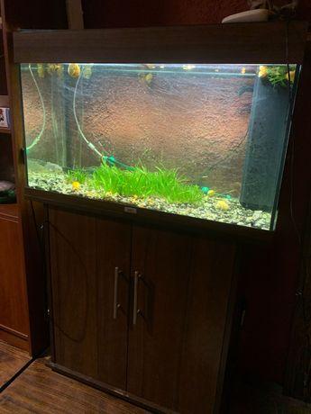 продам большой аквариум) со всеми комплектующими, возможна доставка