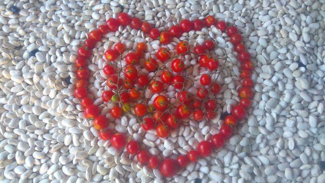 Томат Черри красный семена