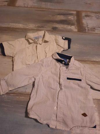 Koszula Coccodrillo r. 74, jak nowe