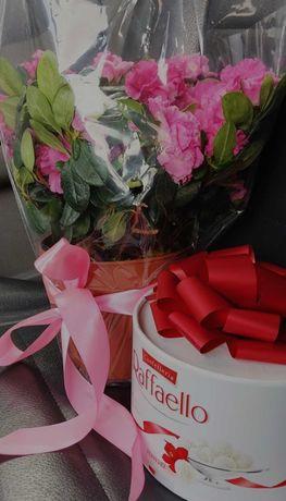Быстрая доставка цветов и подарков в Луганске