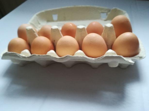 Swojskie jajka